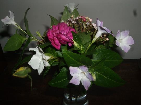 A little bouquet from my garden.