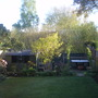 Back garden overview.