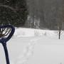 Deep snow with snowshoe tracks...