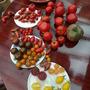 tomatoes à gogo  240813