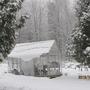 Last year...first snowfall