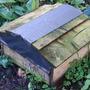 Hedgehog box