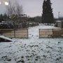 Back garden February 2007
