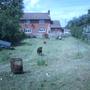 Back garden 2007
