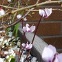 1st_march_2014_090