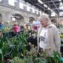 Tavistock Plant Sale