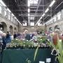The Tavistock Plant Sale