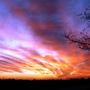 Sunset_16.03.2014.1