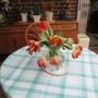 Vase of Parrot Tulips (Tulip)