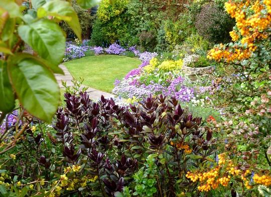 Front garden 2014 ...