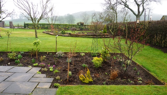 My favourite view of the garden....