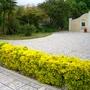 Entrance garden 2