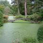 Garden Tatton Park