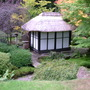 Japanese Garden Tatton Park