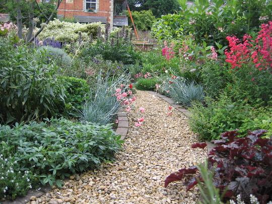 Front garden 1 - 26th June 2007