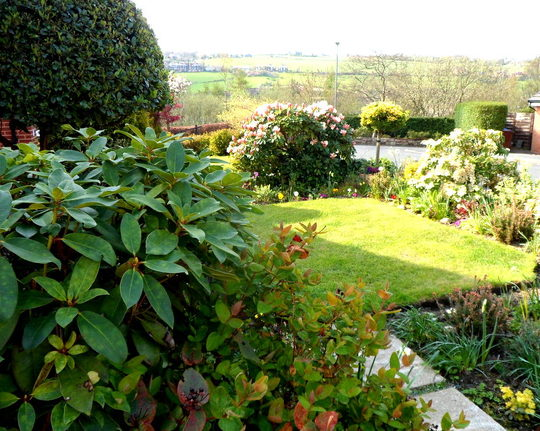 Spring Front Garden