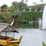 Stork on the lake
