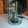 finally a squirrel-proof bird feeder - maybe!
