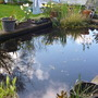 Pond_clear