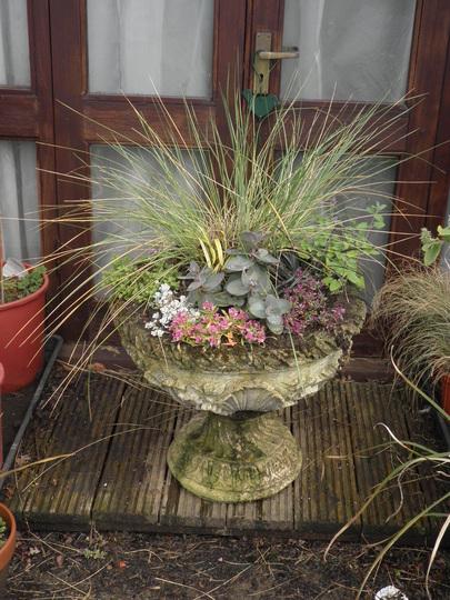 Queen Vic planter