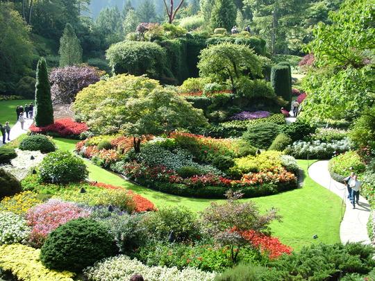 The sunken gardens 2