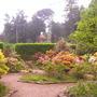 Wentworth Castle-gardens