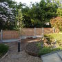 New fence and new tree-Silver Birch