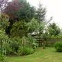 Garden 27th May 2014 033