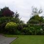 Garden 27th May 2014 010