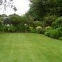 Garden 27th May 2014 006