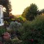 Sunset 08.06.14