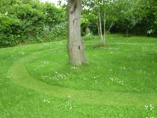 A mown path through long grass