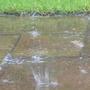 oh joy, more rain