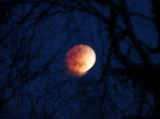 Blood Moon, April