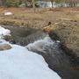 A stream barrier..