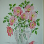 Spring flowers Fordham 001