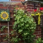 Sunflower Mosaic Grapevine and basket
