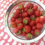 Strawberries...6871010599140975_n