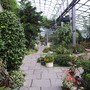 Dunfglasshouseview1