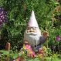 June_2014_garden_001
