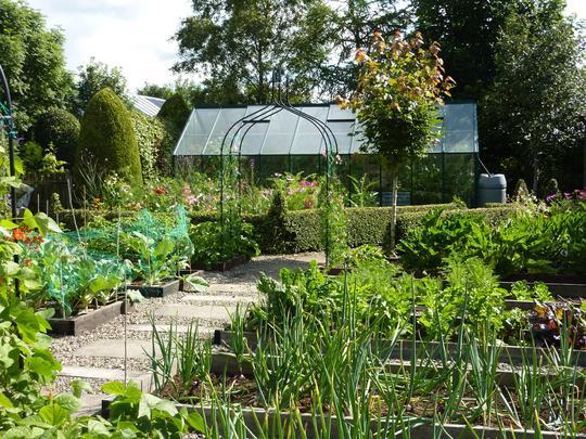 Veggie greenhouse