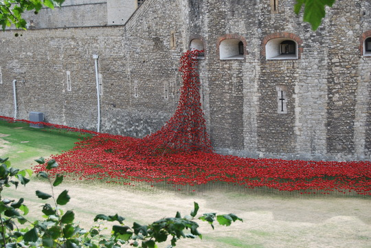 888,246..............a sea of poppies @ the Tower of London