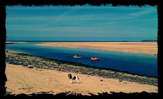 Danny at Hayle Estuary