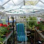 Mums's Greenhouse
