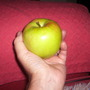 Good crop of apples from 'James Grieve'.