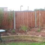 Bamboo and Weeping Cherry tree planted