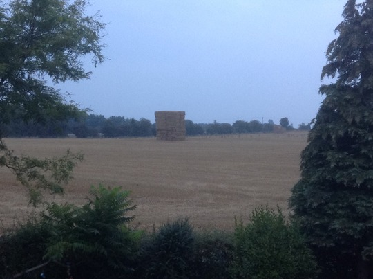 Straw Baled ... All done in 2 days.