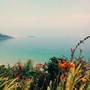 Walking to St Ives (crocosmia)