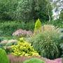 Foxhollow, garden view
