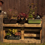 Pallets in my garden